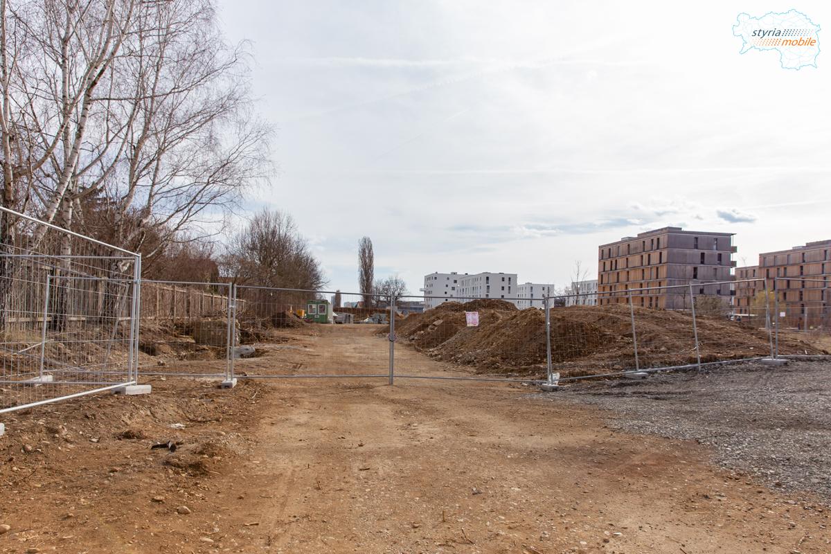 Bimtrasse vor Endschleife Blickrichtung Süden, 09.03.2019