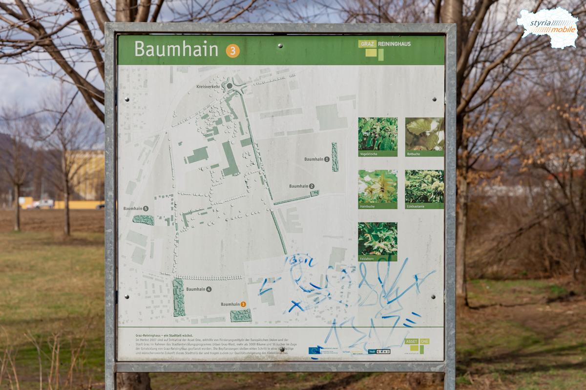 Baumhain, die Tafel bei der Sterzinggasse ist besser erhalten, 09.03.2019