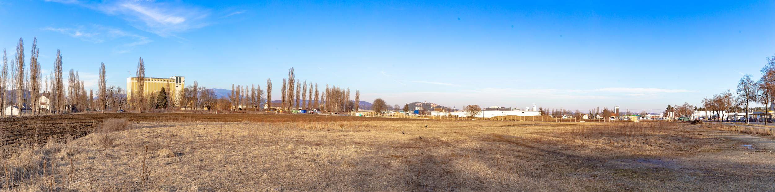 Reininghauspanorama von Südwesten, 09.02.2019